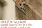 gootspookjes-horen-zien-en-zwijgen-2419d280fe5933364b85127b9aa7a2859c7fdd92